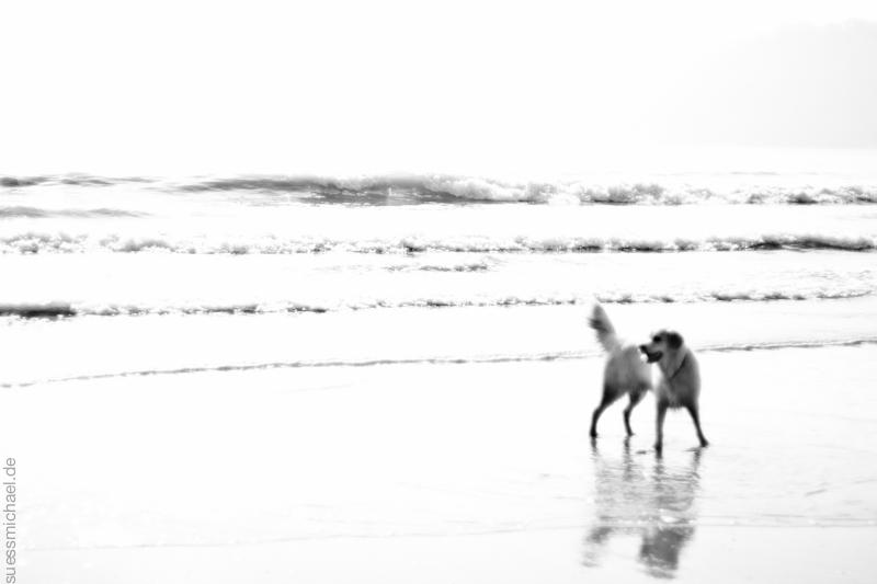 2011-09-29 Oxwich Bay