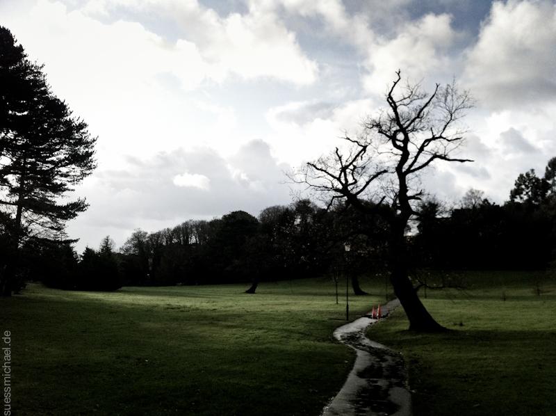 2011-12-15 Swansea Singleton Park