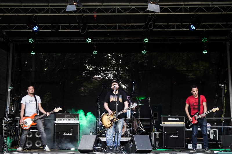 2014-06-27 Jahninselfest Opiliones