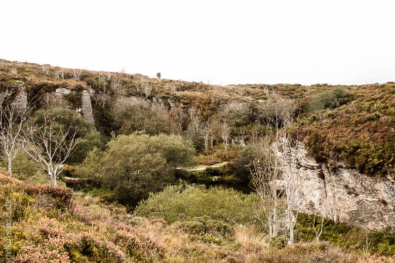 2014-10-07 Dartmoor
